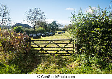 Wooden gate and hedge in the Lake District UK