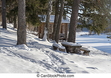 Wooden gazebo in the woods on a Sunny winter day.