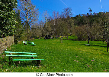 Wooden green bench under trees in the park