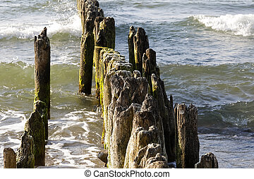 Wooden groyne just next to the beach