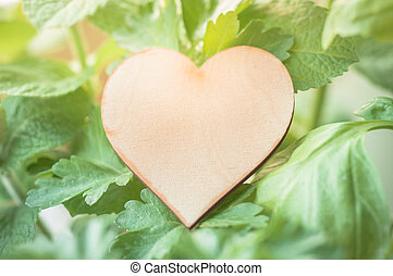 Wooden heart label with various herbs.