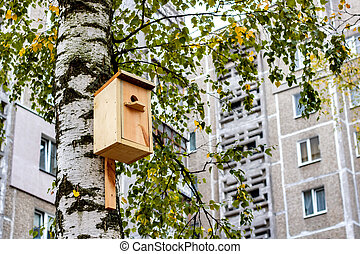 Wooden house for birds on the birch