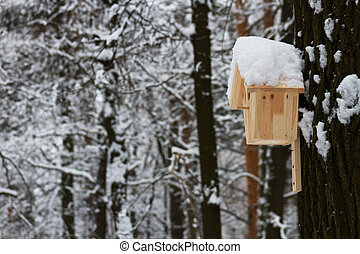 Wooden house for the birds in winter Park