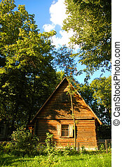 Wooden house in the forest in summer