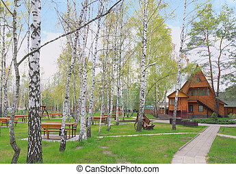 Wooden house in the spring forest, Ukraine