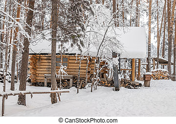 Wooden house in the winter forest.