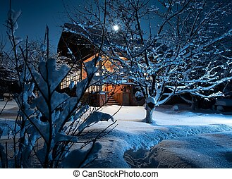 wooden house in winter forest. night. moonlight