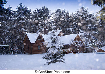 wooden house in winter