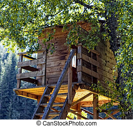wooden house on a tree