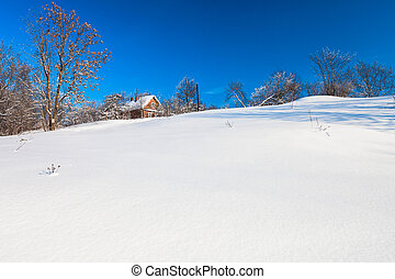 Wooden house on the hill in winter forest