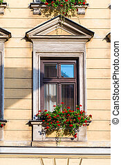 wooden house window with beautiful red flowers in a pot closeup