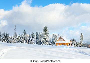 Wooden house with road under the snow