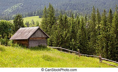 wooden houses on a grass hills