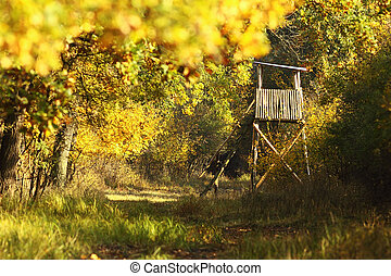 wooden hunting tower in the forest