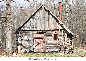 Wooden hut - Shabby wooden hut in the forest. Early spring...