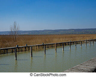 Wooden jetty at a lake in spring
