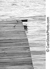 Wooden jetty with waterbirds