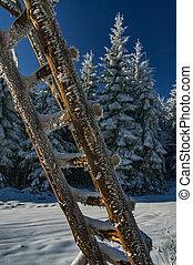 Wooden ladder in winter
