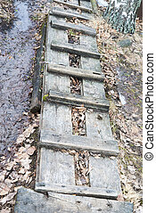 Wooden ladder lying on the ground.