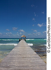 Wooden Landing at Natural Caribbean Beach