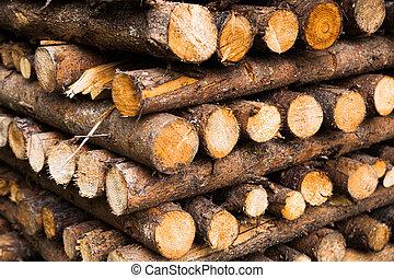 wooden logs storage, closeup view