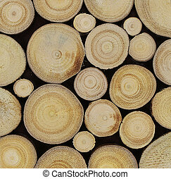 wooden material texture