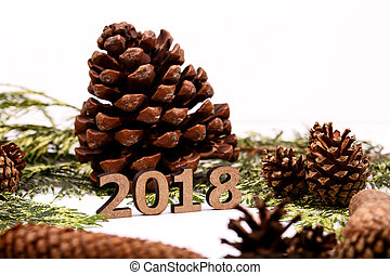 Wooden number 2018 stands before conifer cone