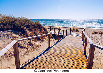 Wooden path at Costa Nova d'Aveiro, Portugal, over sand dunes with ocean view, summer evening. Wooden footbridge of Costa Nova beach in a sunny day. Aveiro, Portugal.