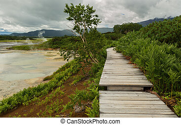 Wooden path in the Uzon Caldera. Kronotsky Nature Reserve on...