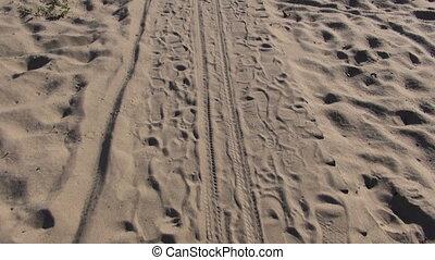 wooden path on sea  coast