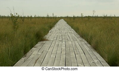 Wooden pathway in the national swamp reserve. Autumn daytime. Smooth dolly shot