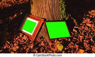 Wooden photo frames with green chromakey leaning on tree trunk stand among fallen dry leaves surface on sunny day closeup