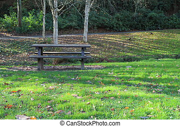 Wooden picnic table in a park