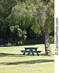Wooden picnic table under a tree in a park