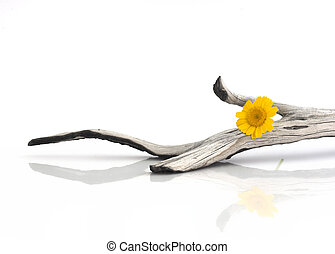 Wooden piece with a yellow flower