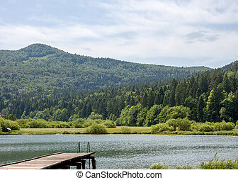 pier and forest on lake