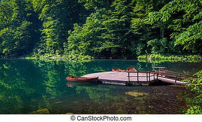 Wooden pier at forest lake