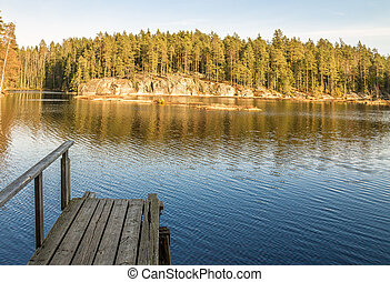 Wooden pier in the forest pond