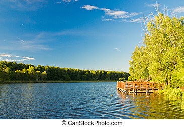 wooden pier on a pond in summer