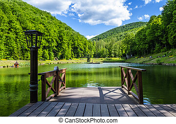 Wooden pier on the lake against the background of the forest.