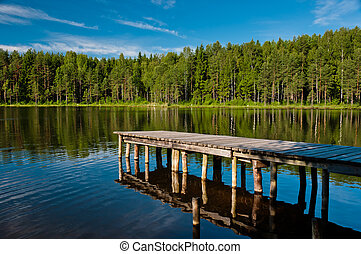 Wooden pier with forest scene