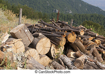 Wooden pile