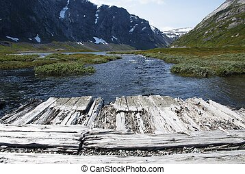Wooden Planks with Copyspace in Nature