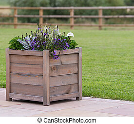wooden planter with purple flowers
