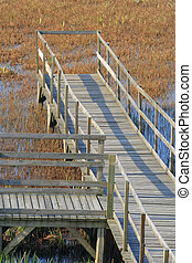 Wooden platform on swamp surrounded with dense surface of...