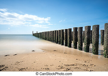 Wooden poles in the sea - on the coast there are wooden...