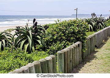 Wooden Poles Marking the Edge of the Sand Dunes at Beach