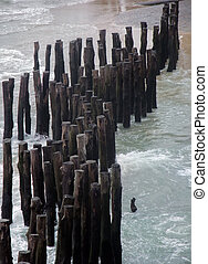 wooden poles - wooden stakes at Saint-Malo, a port city in...