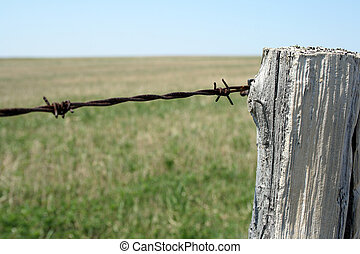 Old wooden post and barbed wire farm fence.