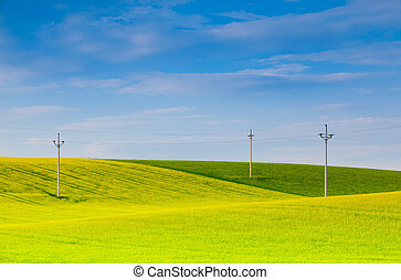 Wooden power poles  on the empty  field